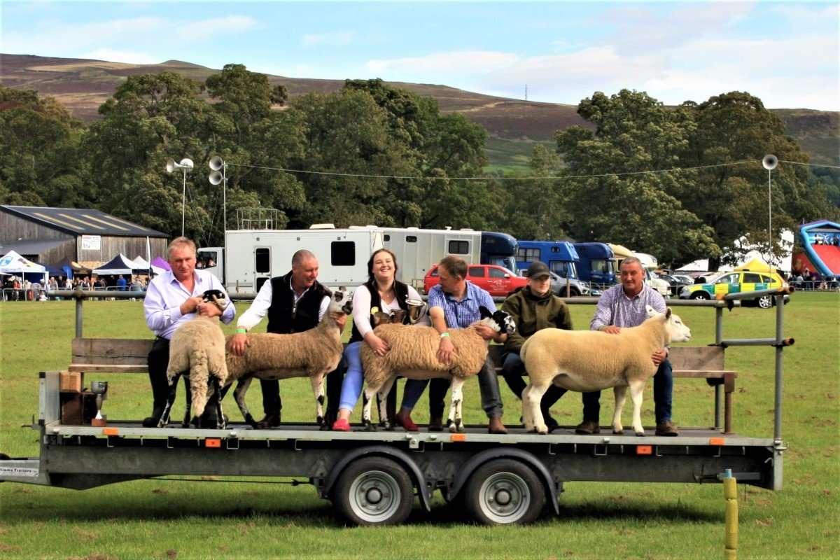 Sheep Parade Stanhope Show