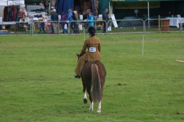 Side Saddle Stanhope Show